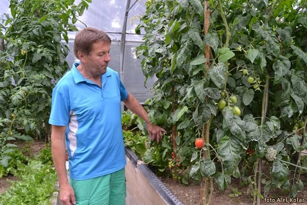 visokogredno vrtnarjenje na treh kraljih DSC 0558